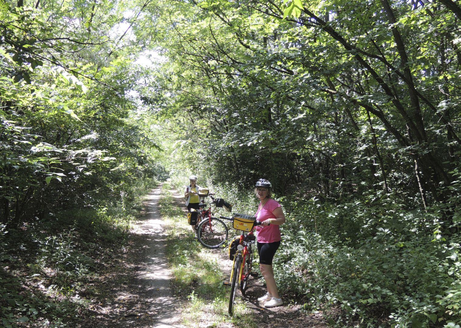viennatobudapest9.jpg - Austria, Slovakia and Hungary - Vienna to Budapest - Self-Guided Family Cycling Holiday - Family Cycling