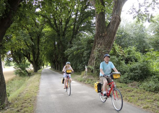 viennatobudapest11.jpg - Austria, Slovakia and Hungary - Vienna to Budapest - Self-Guided Family Cycling Holiday - Family Cycling