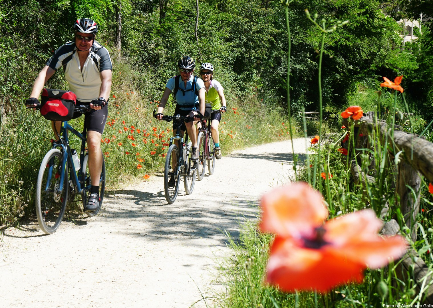 spello-green-heart-of-umbria-italy-self-guided-leisure-cycling.JPG - NEW! Italy - Spirit of Umbria - Family Cycling