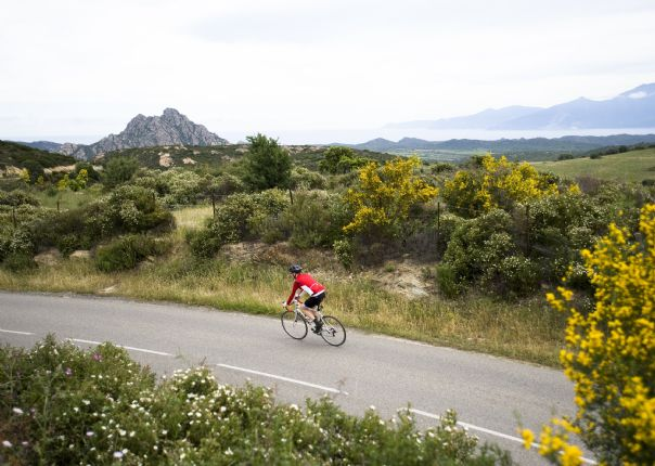 Corsicacycling14.jpg - France - Corsica - The Beautiful Isle - Road Cycling
