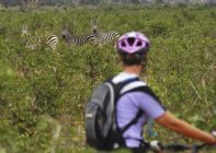 South Africa & Botswana - Mountain Bike Holiday Image
