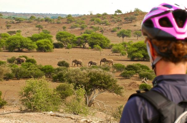 Ronald Jacobs (2).jpg - South Africa and Botswana - Mountain Biking