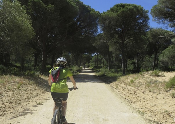 sierrastosea6.jpg - Southern Spain - Sierras to the Sea - Self-Guided Cycling Holiday - Leisure Cycling