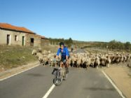 Portugal - Historic Villages - Self-Guided Cycling Holiday Image