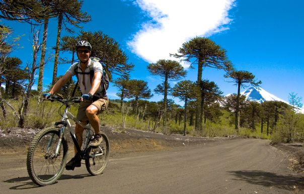 conguillio3.jpg - Chile & Argentina - Lake District - Cycling Adventures