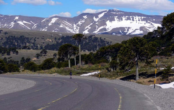 Road (20).JPG - Chile & Argentina - Lake District Explorer - Road Cycling
