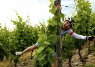 Chile - Wine Country - Cycling Holiday Image