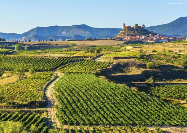 Northern Spain - Rioja - Ruta del Vino - Guided Road Cycling Holiday Thumbnail