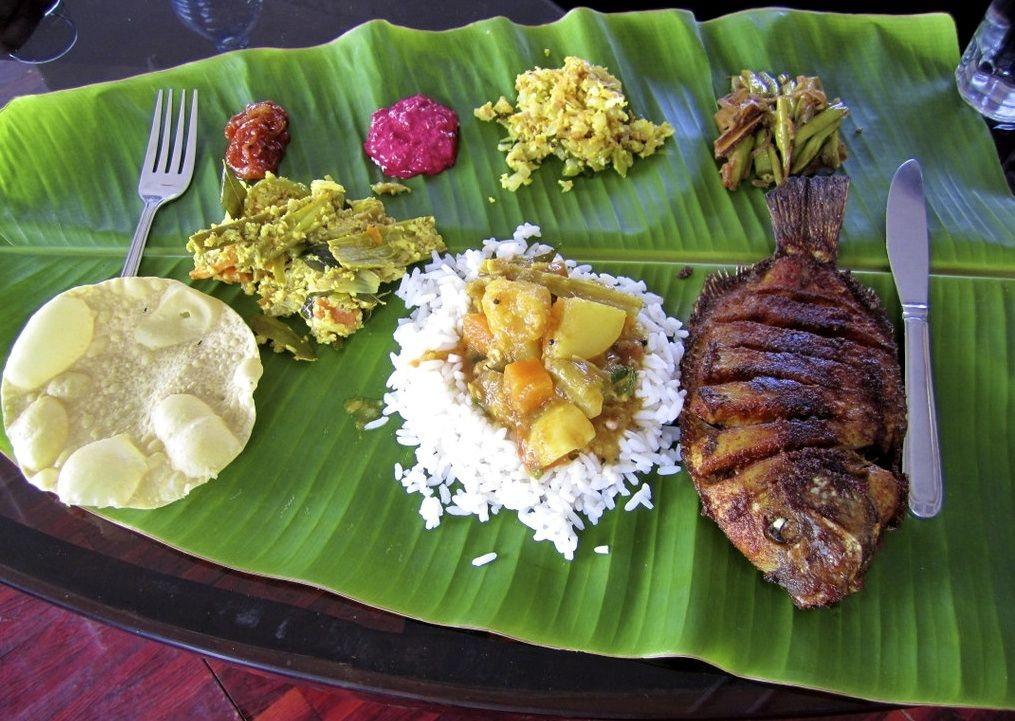11966194045_c9b6970a20_o.jpg - India - Classic Kerala - Cycling Adventures