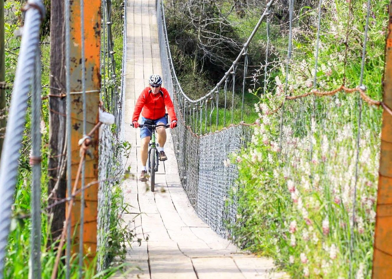 _Holiday.746.20267.jpg - Chile - Wine Country - Cycling Adventures