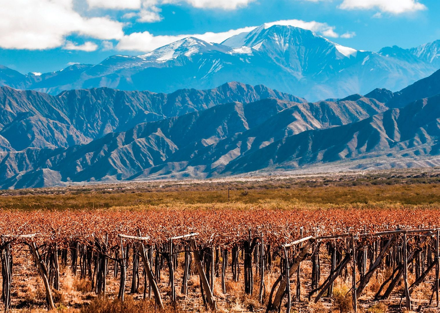 chilewinetour5.jpg - Chile - Wine Country - Cycling Adventures