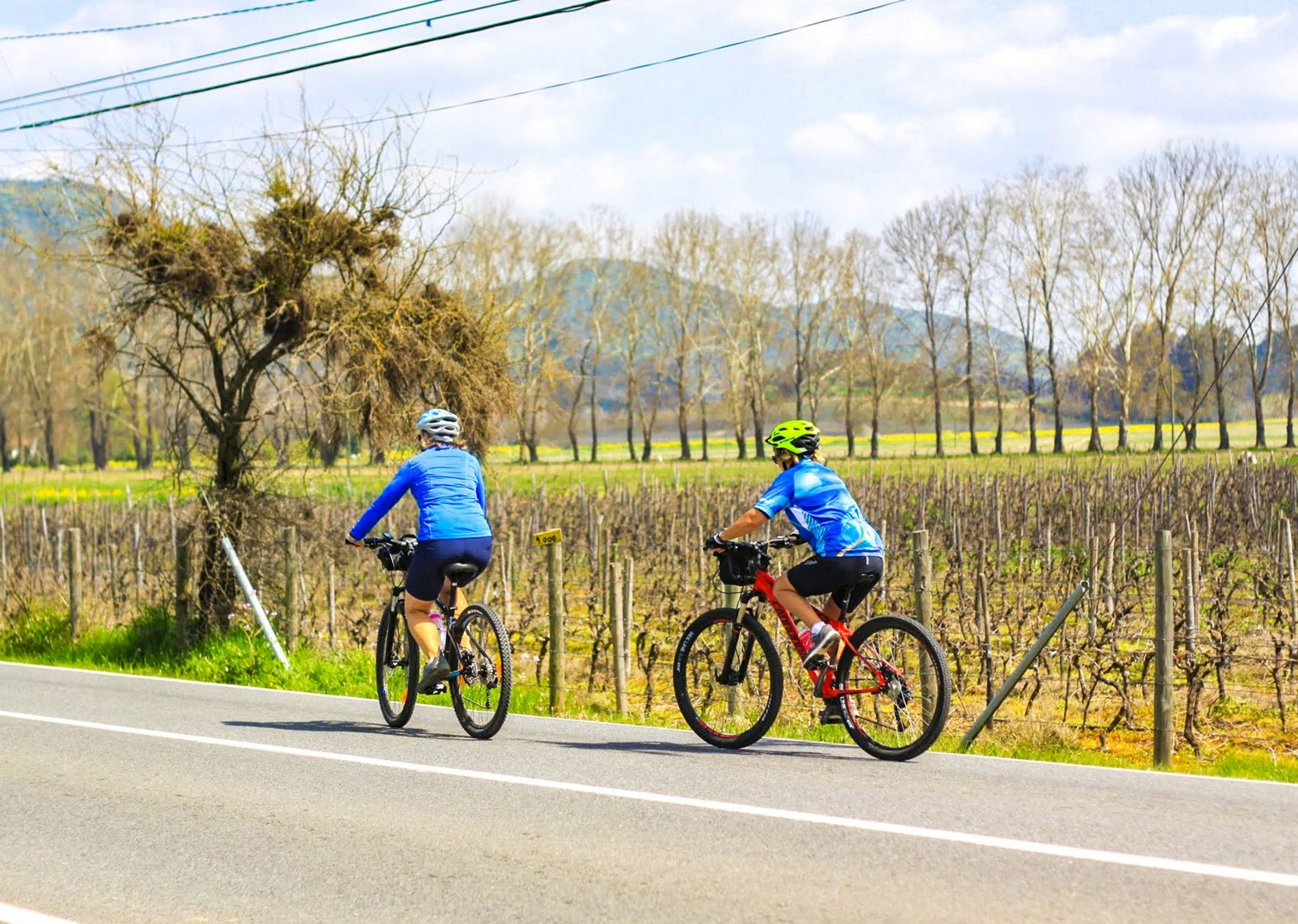 IMG_9414.jpg - Chile - Wine Country - Cycling Adventures