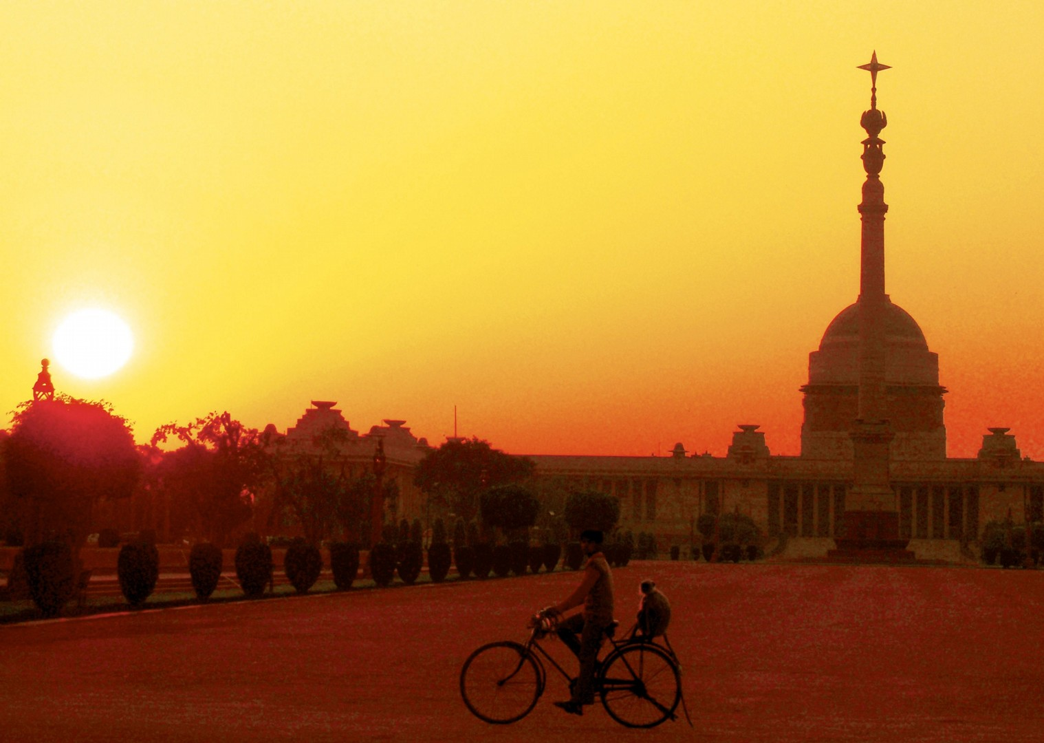 cycling-holiday-adventure-rajastan-india-temple-monkey.jpg - India - Palaces and Lakes of Rajasthan - Cycling Adventures