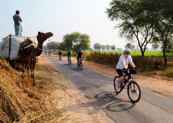 India - Palaces and Lakes of Rajasthan - Cycling Holiday Image