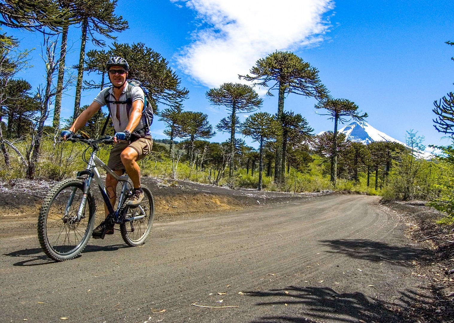 dfssdfsdf.jpg - Chile and Argentina - Lake District - Cycling Adventures
