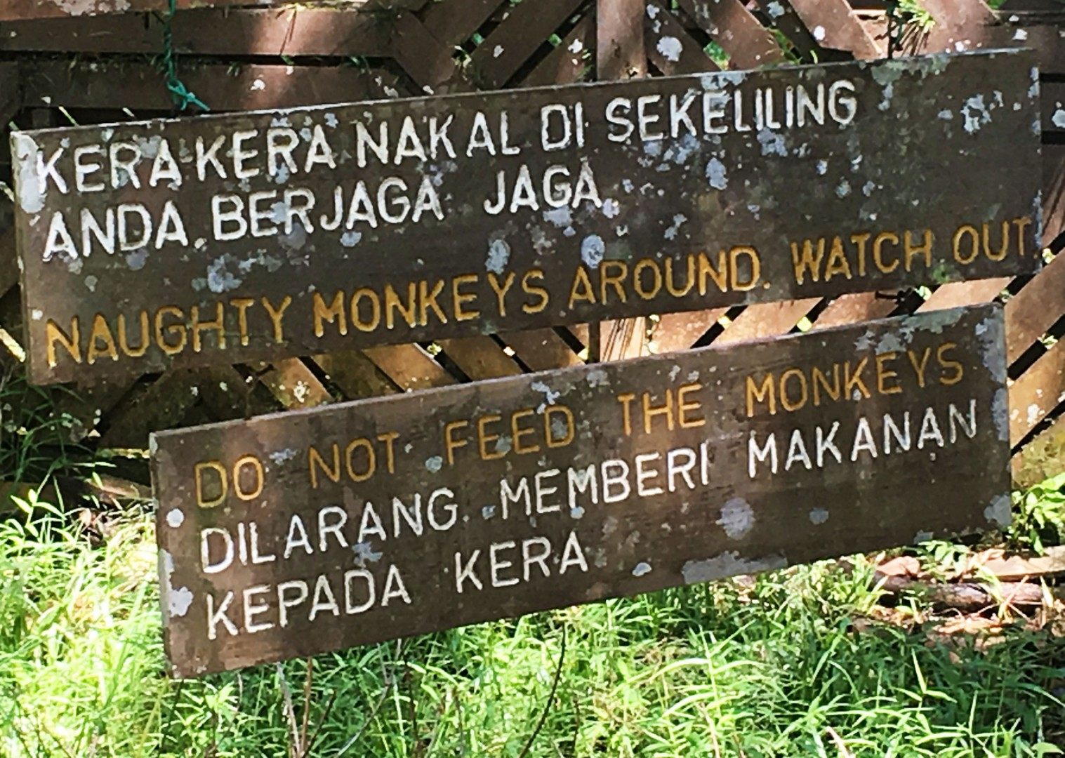 sign-in-boneo-tour-on-bikes.jpg - NEW! Borneo - Secret Sarawak - Cycling Adventures