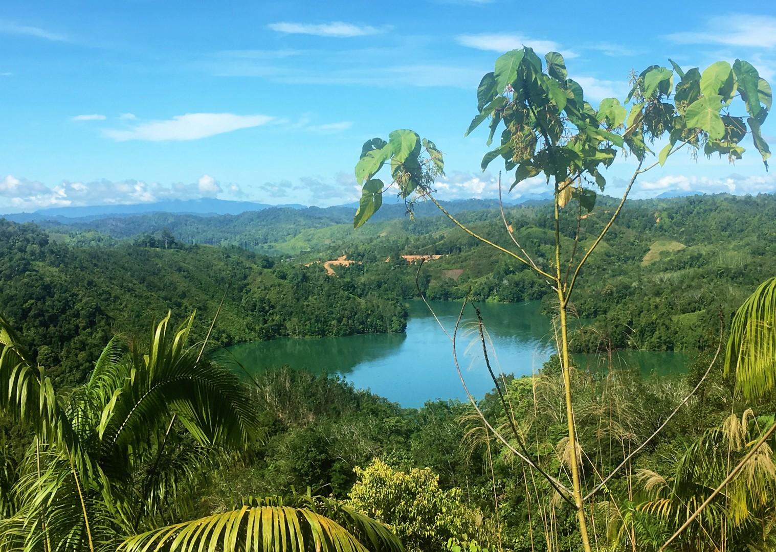 jungle-view-borneo-trip-on-bikes.jpg - NEW! Borneo - Secret Sarawak - Cycling Adventures