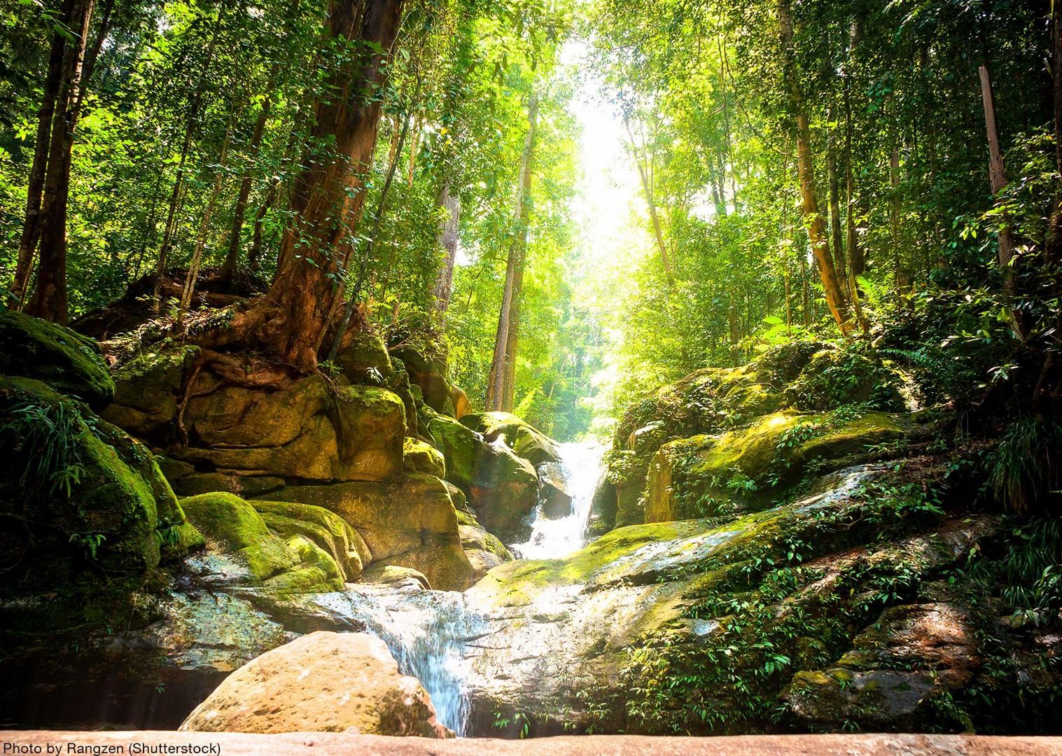 mystical-borneo-jungle-waterfall-tour-cycling.jpg - NEW! Borneo - Secret Sarawak - Cycling Adventures
