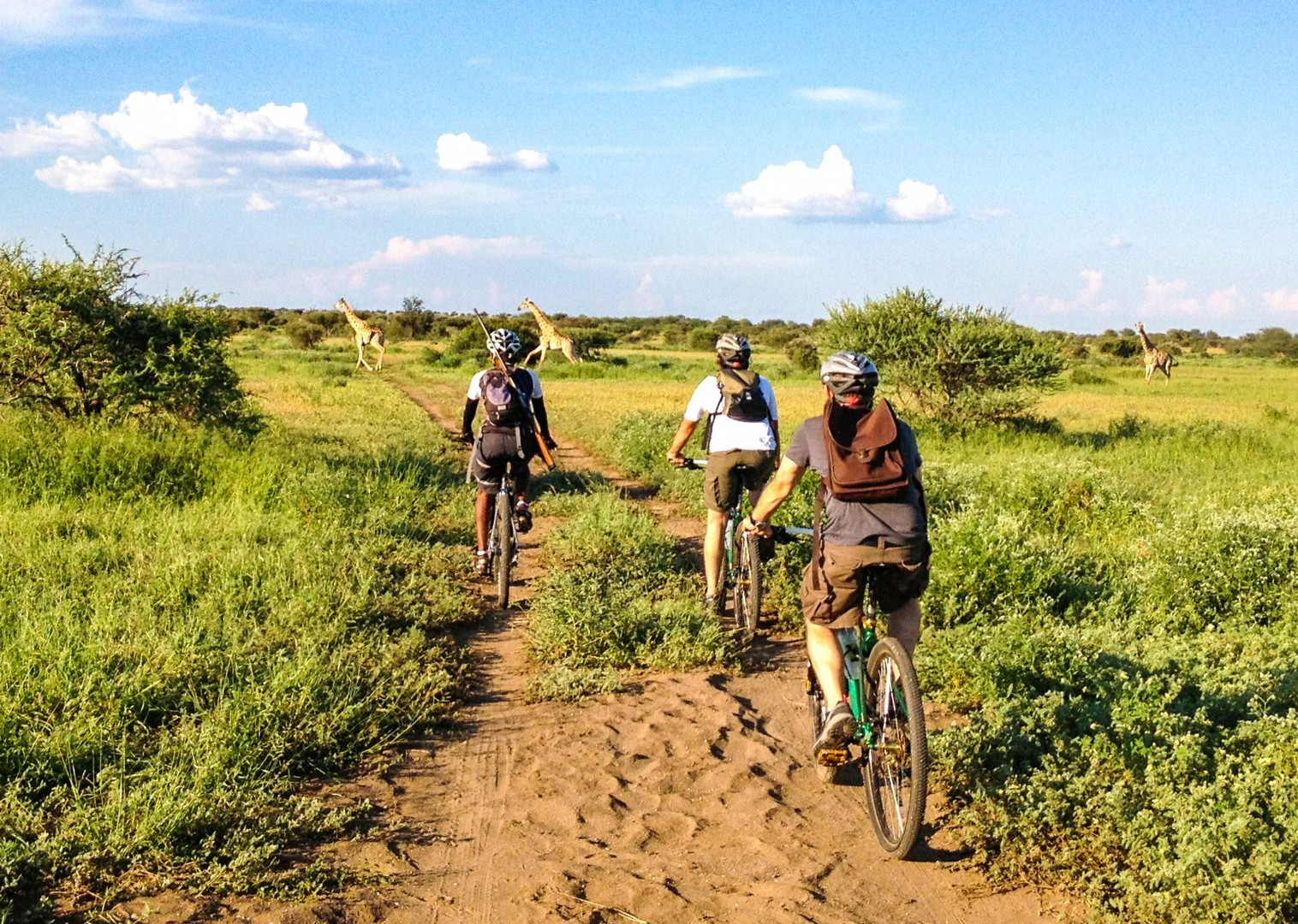 guided-mountain-bike-land-of-the-giants-trip-skedaddle-holiday.jpg - NEW! South Africa and Botswana - Mountain Biking