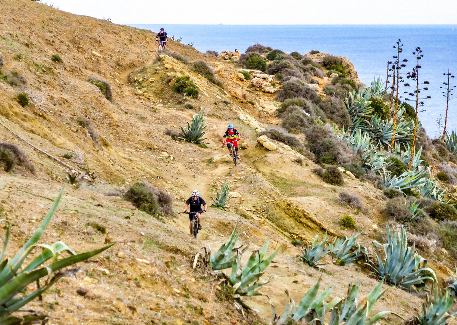 trans-andaluz-mountain-bike-tour-biking-holiday-spain.jpg - Spain - Trans Andaluz - Guided Mountain Bike Holiday - Mountain Biking