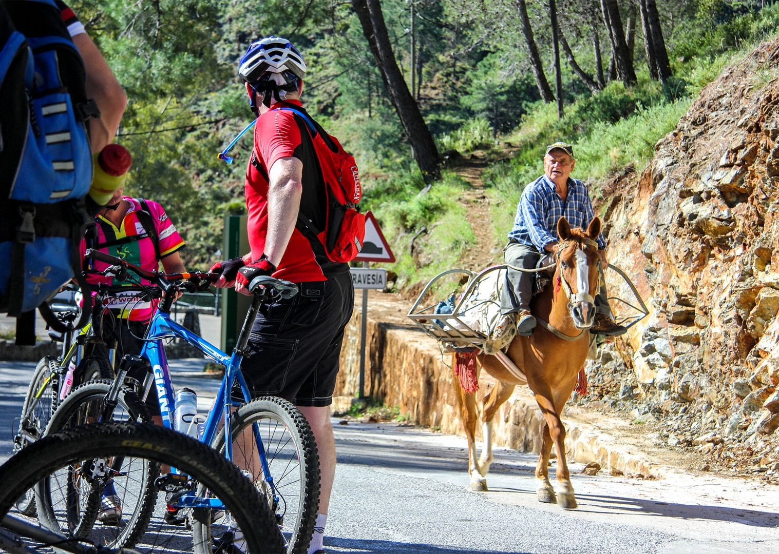 trans-andaluz-saddle-skedaddle-tour-mountain-bike.jpg - Spain - Trans Andaluz - Guided Mountain Bike Holiday - Mountain Biking