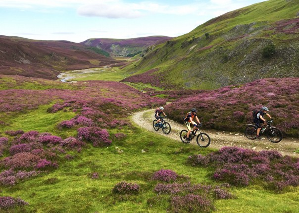 UK - Scotland - Highlands Coast to Coast - Guided Mountain Bike Holiday Image