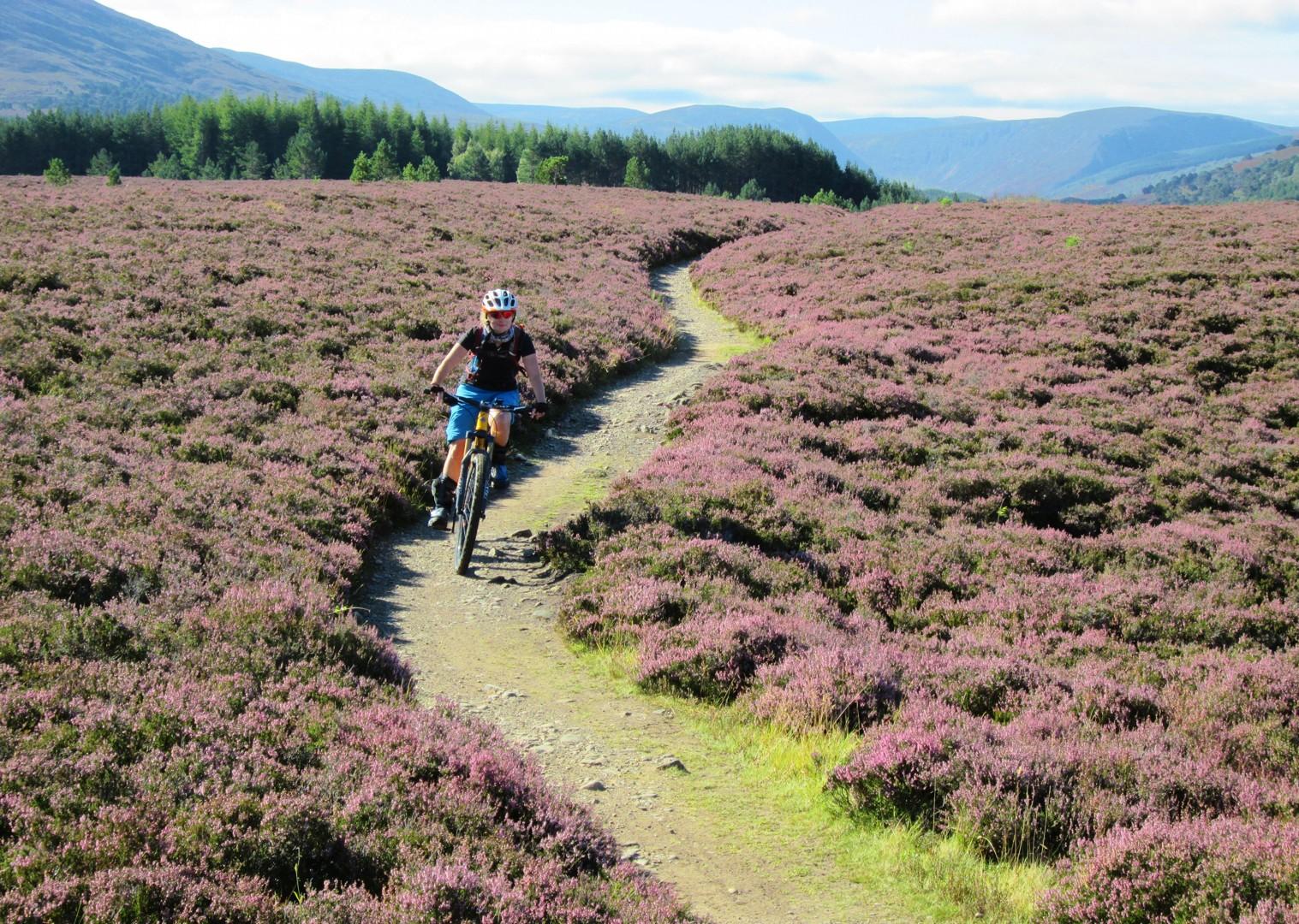 highland-biking-trails-scottish-highlands.jpg - Scotland - Highlands Coast to Coast - Mountain Biking