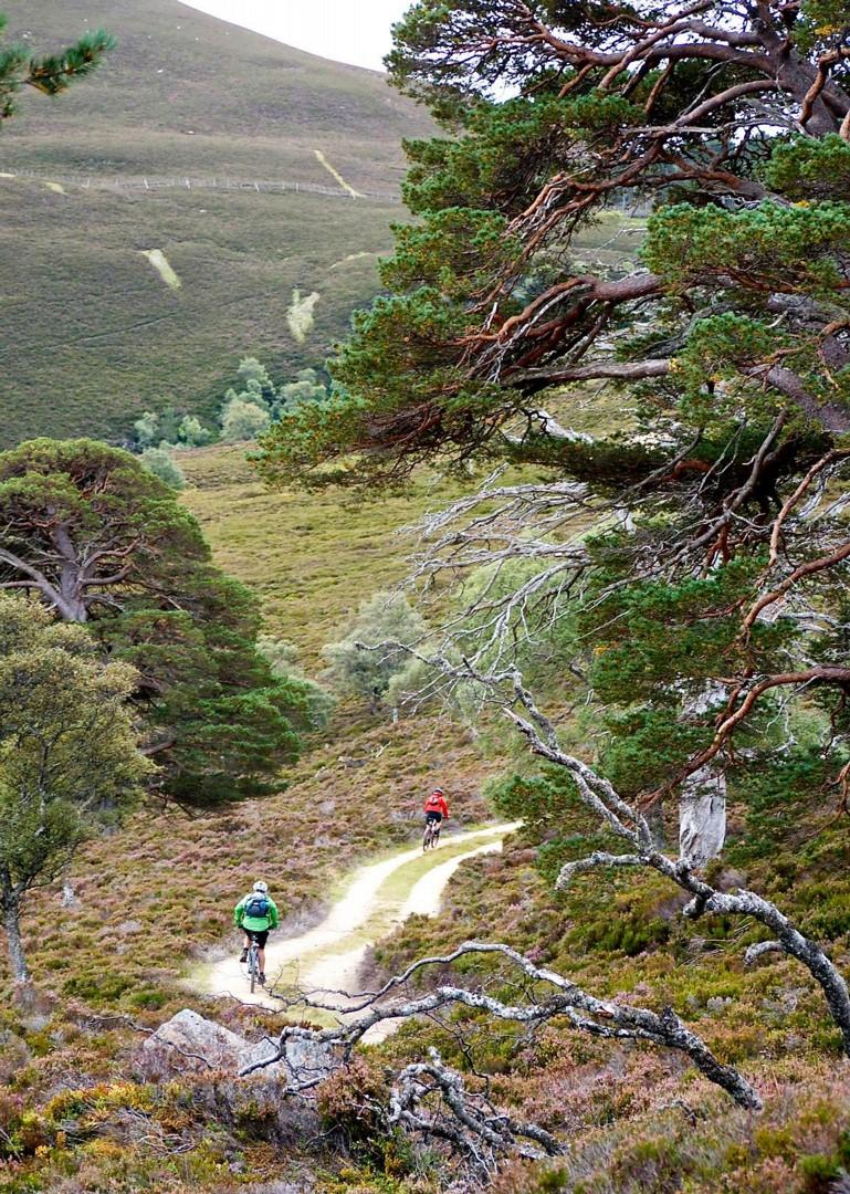 epic-cycling-trails-mountain-biking-scotland.jpg - Scotland - Celtic Crossing - Guided Mountain Bike Holiday - Mountain Biking