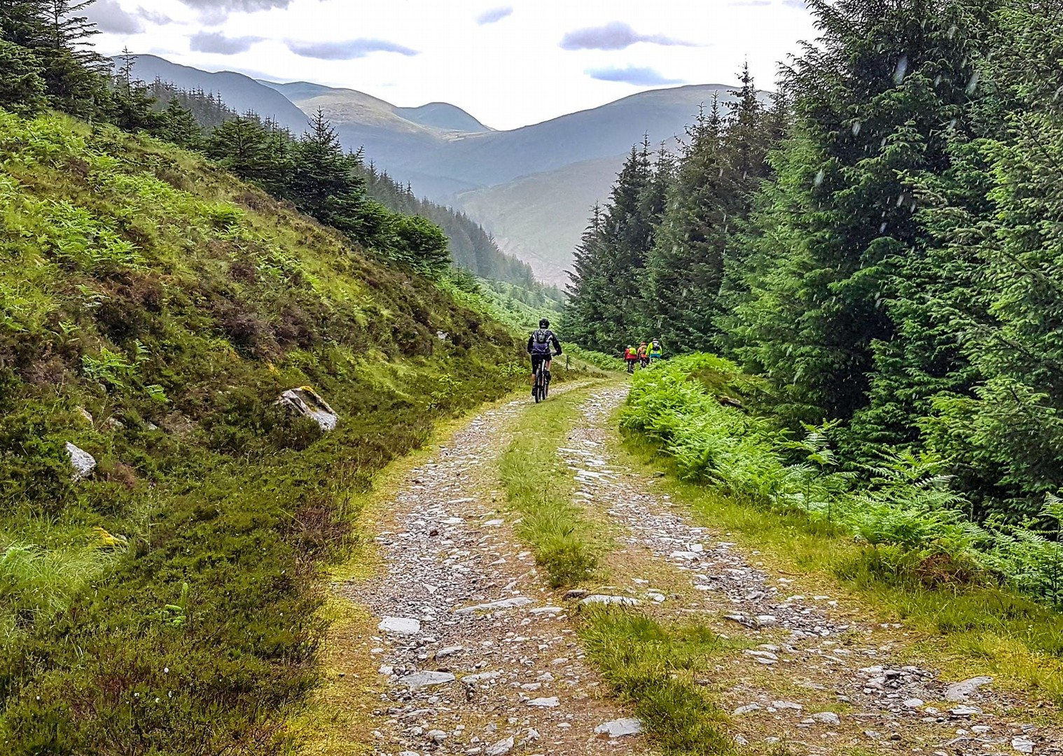 _Customer.153210.40426.jpg - Scotland - Celtic Crossing - Guided Mountain Bike Holiday - Mountain Biking