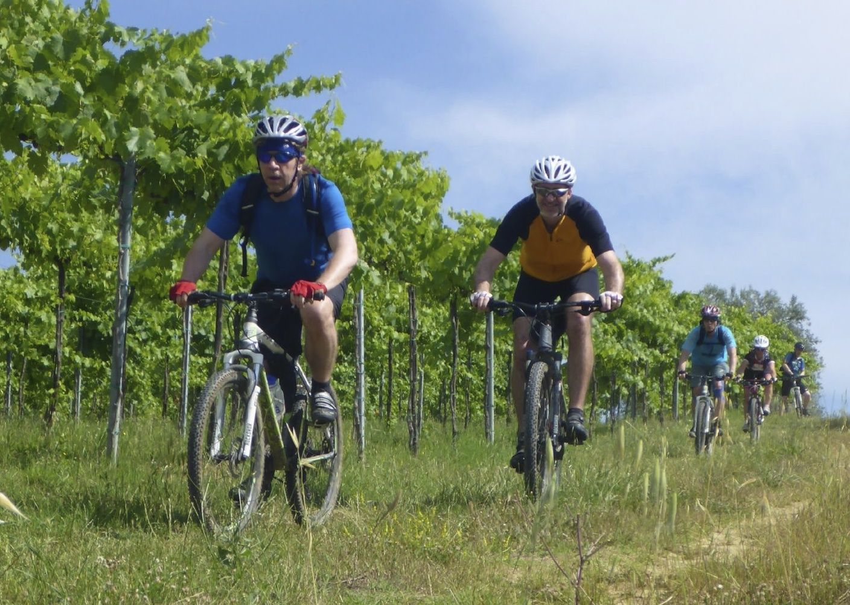 tuscanMTB.jpg - Italy - Tuscany - Sacred Routes - Guided Mountain Bike Holiday - Mountain Biking