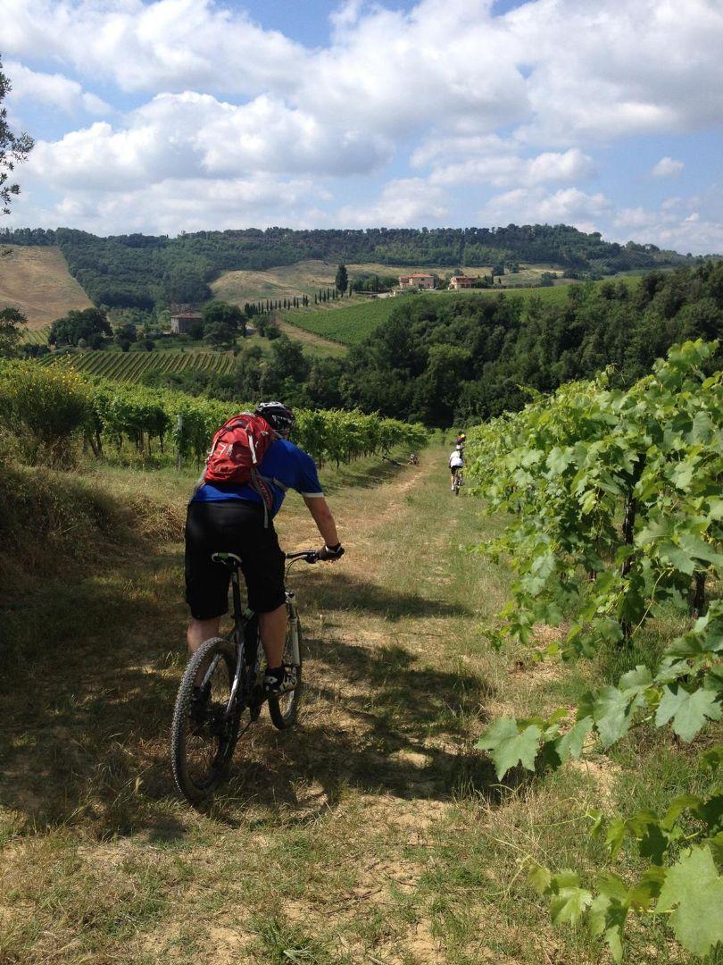 IMG_1643.JPG - Italy - Tuscany - Sacred Routes - Guided Mountain Bike Holiday - Mountain Biking