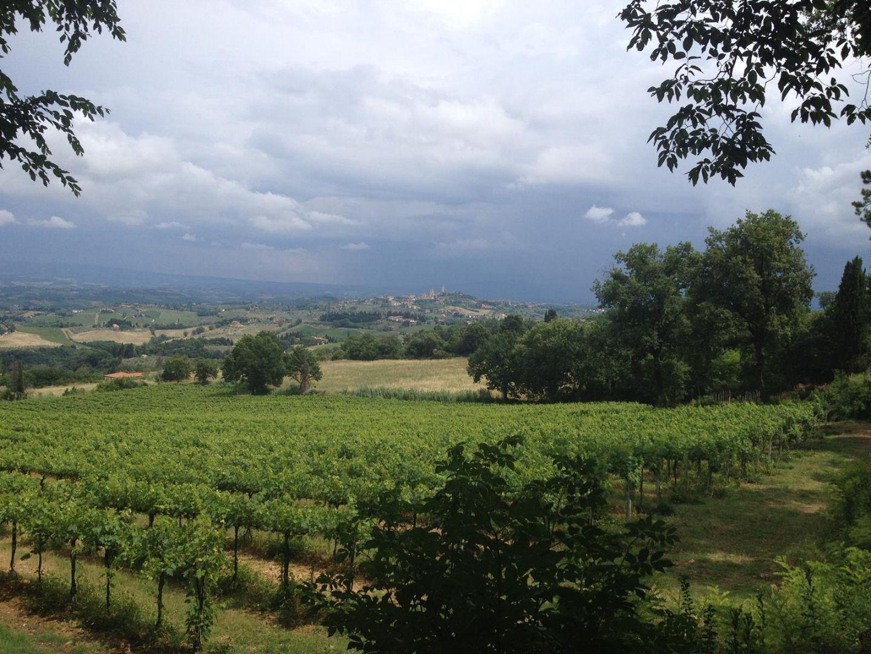 IMG_1628.JPG - Italy - Tuscany - Sacred Routes - Guided Mountain Bike Holiday - Mountain Biking