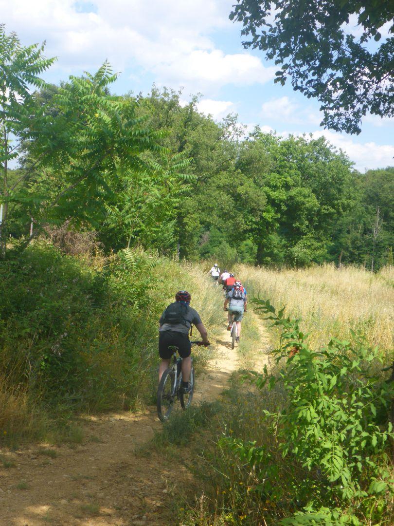 P1010616.JPG - Italy - Tuscany - Sacred Routes - Guided Mountain Bike Holiday - Mountain Biking