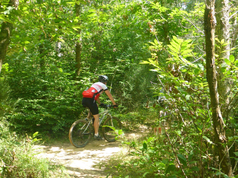 P1010630.JPG - Italy - Tuscany - Sacred Routes - Guided Mountain Bike Holiday - Mountain Biking