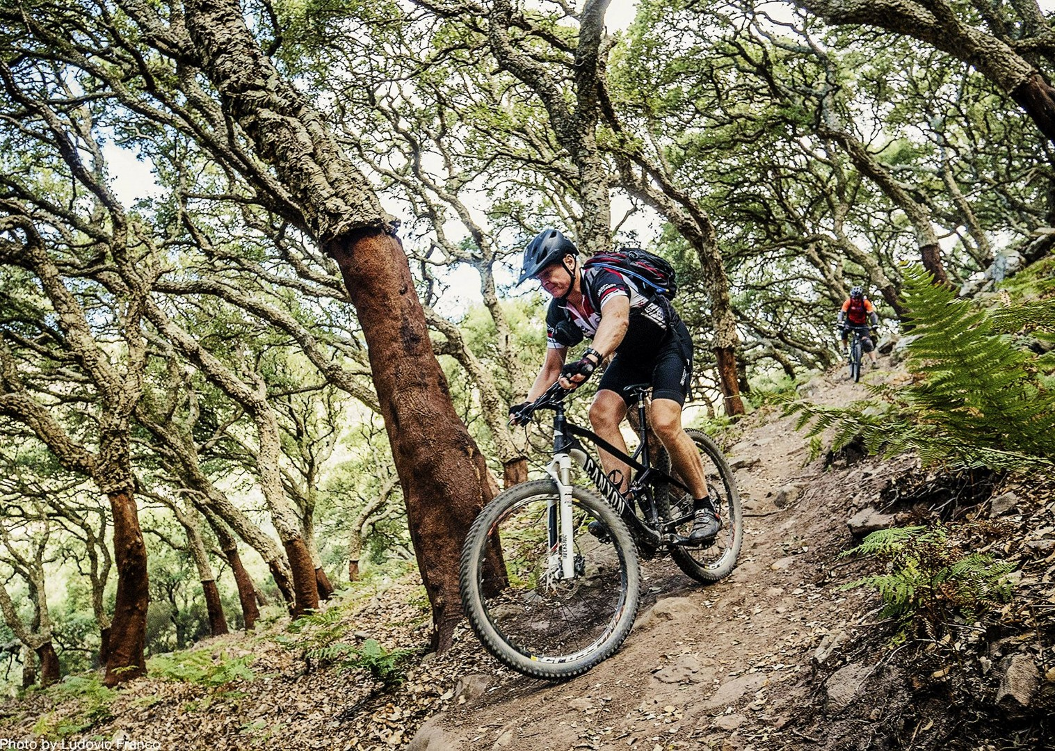 mountain-biking-andalucia-tarifa-singletrack.jpg - Spain - Awesome Andalucia - Guided Mountain Bike Holiday - Mountain Biking