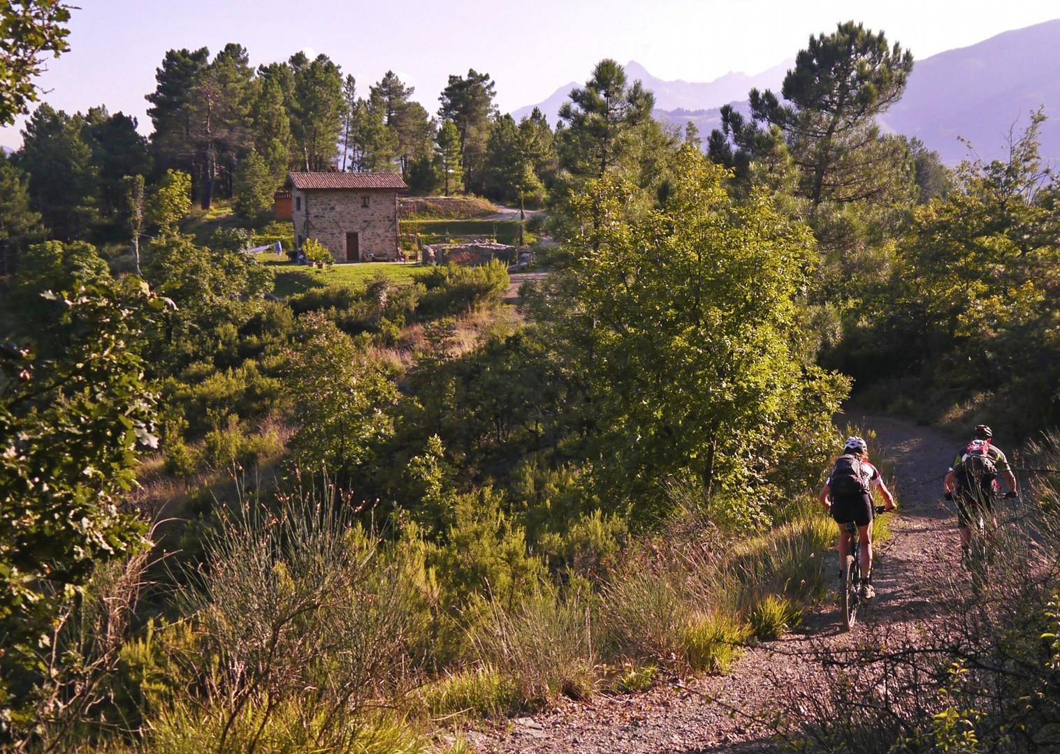 _Holiday.863.16220.jpg - Italy - Via Francigena (Tuscany to Rome) - Guided Mountain Biking Holiday - Mountain Biking