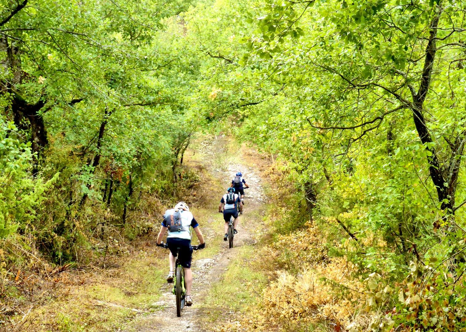 Foto 11-09-17, 10 21 59.jpg - Italy - Via Francigena (Tuscany to Rome) - Guided Mountain Biking Holiday - Mountain Biking