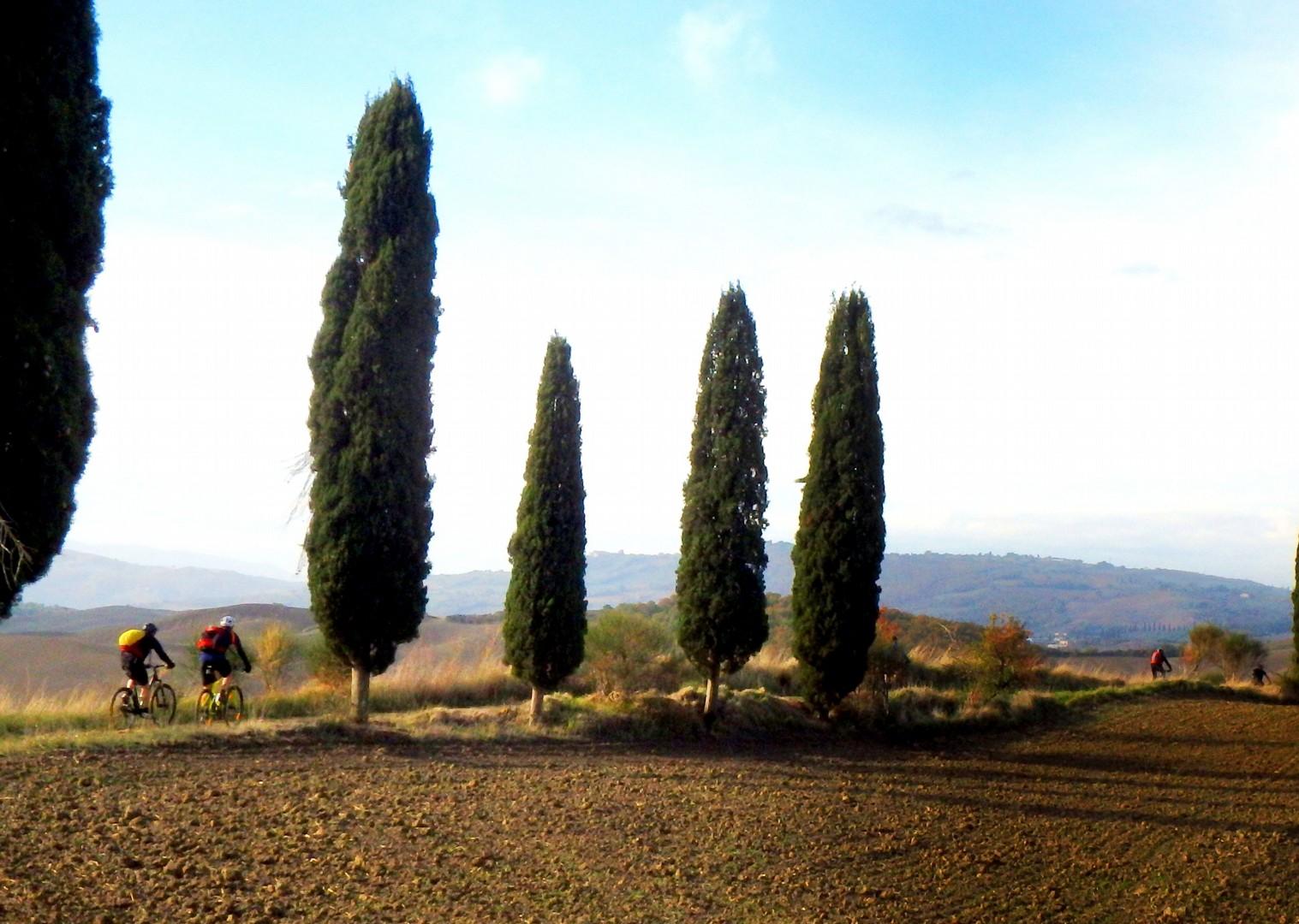 PB090046a.JPG - Italy - Via Francigena (Tuscany to Rome) - Guided Mountain Biking Holiday - Mountain Biking