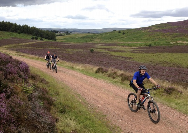 UK - Northumberland - Sandstone Way - Self Guided Mountain Bike Weekend Image