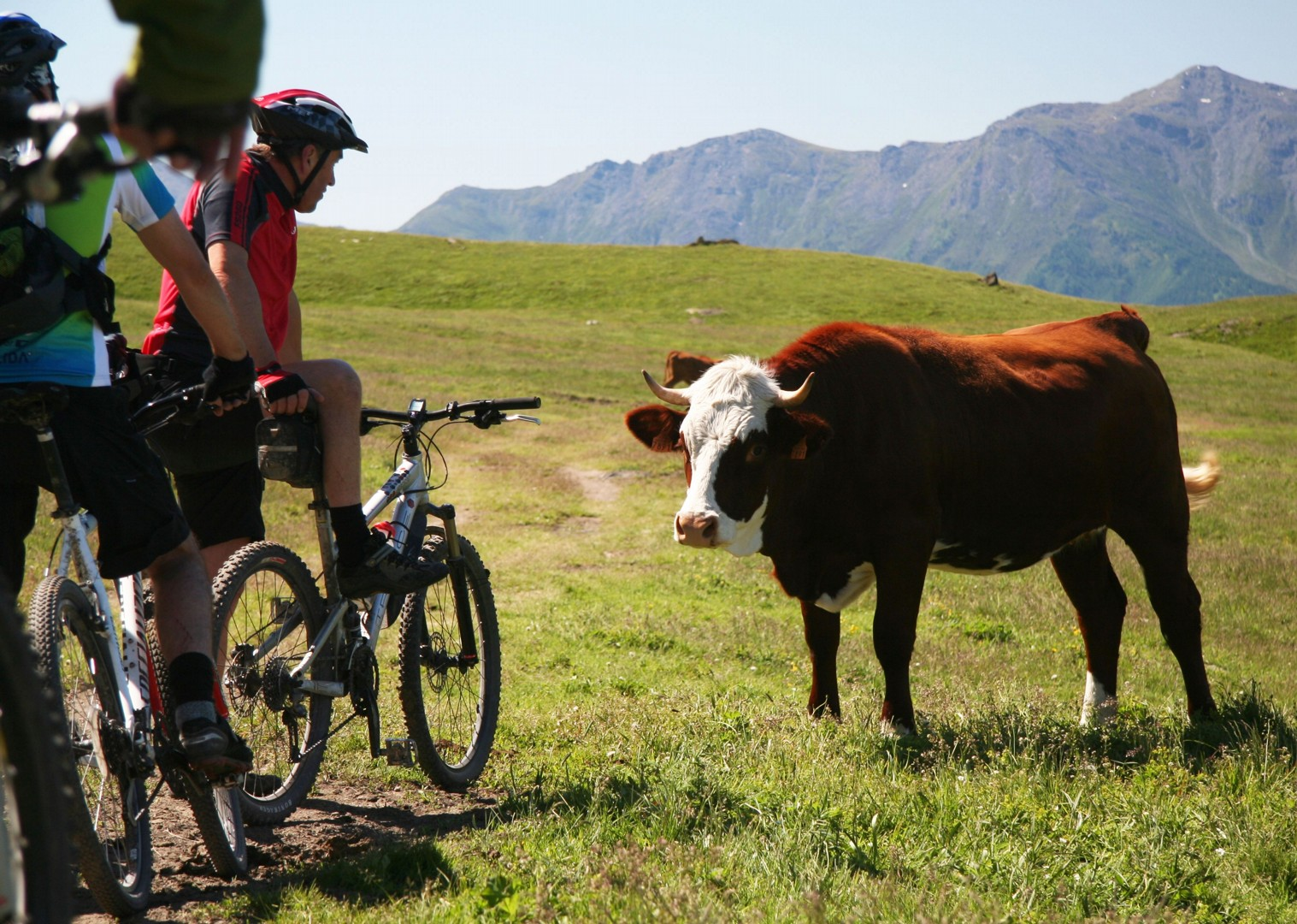expert-guides-mountain-bike-holiday-in-the-alps-alpine-adventure.JPG - Italy and France - Alpine Adventure - Guided Mountain Bike Holiday - Mountain Biking