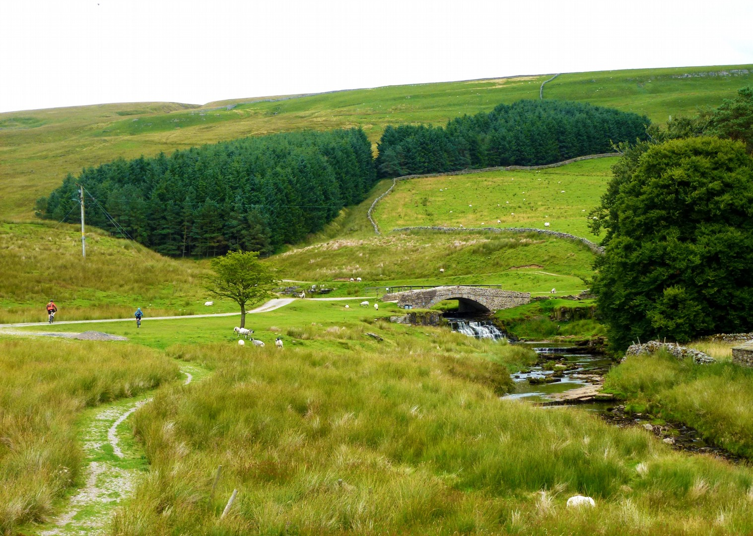 cam-high-road-mountain-bike-holiday-skedaddle.JPG - UK - Pennine Bridleway - Guided Mountain Bike Weekend - Mountain Biking