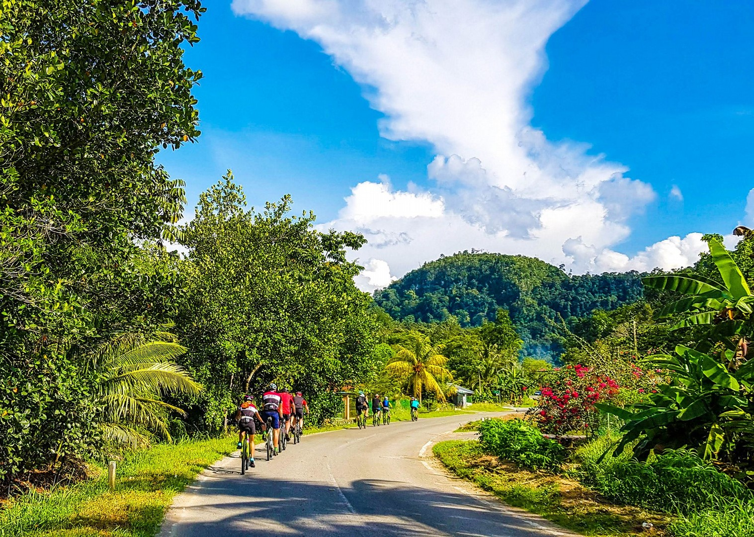 cycling-in-borneo-road-holiday-sarawak-to-sabah.jpg - Borneo - Sarawak to Sabah - Guided Road Cycling Holiday - Road Cycling