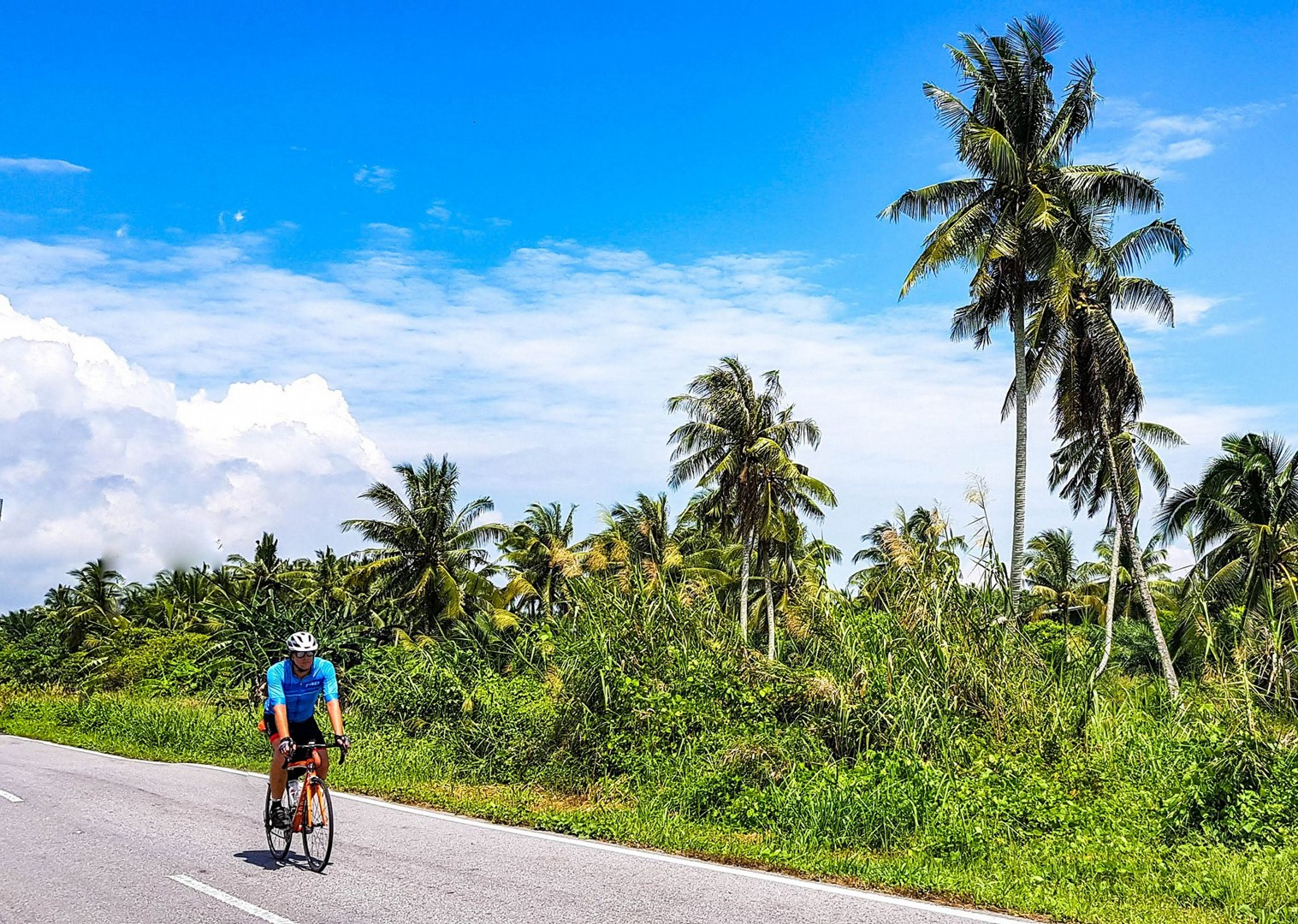 road-cycling-guided-borneo-long-haul-holiday.jpg - Borneo - Sarawak to Sabah - Guided Road Cycling Holiday - Road Cycling