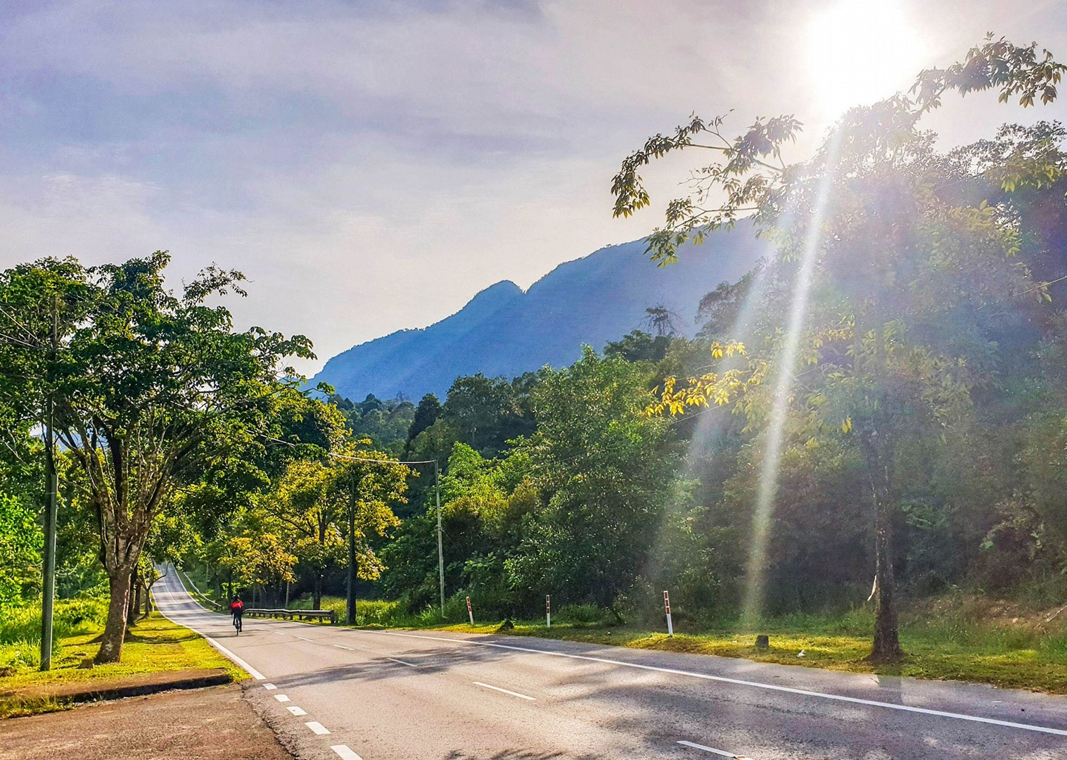 cycling-road-borneo-holiday-saddle-skedaddle-trip.jpg - Borneo - Sarawak to Sabah - Guided Road Cycling Holiday - Road Cycling