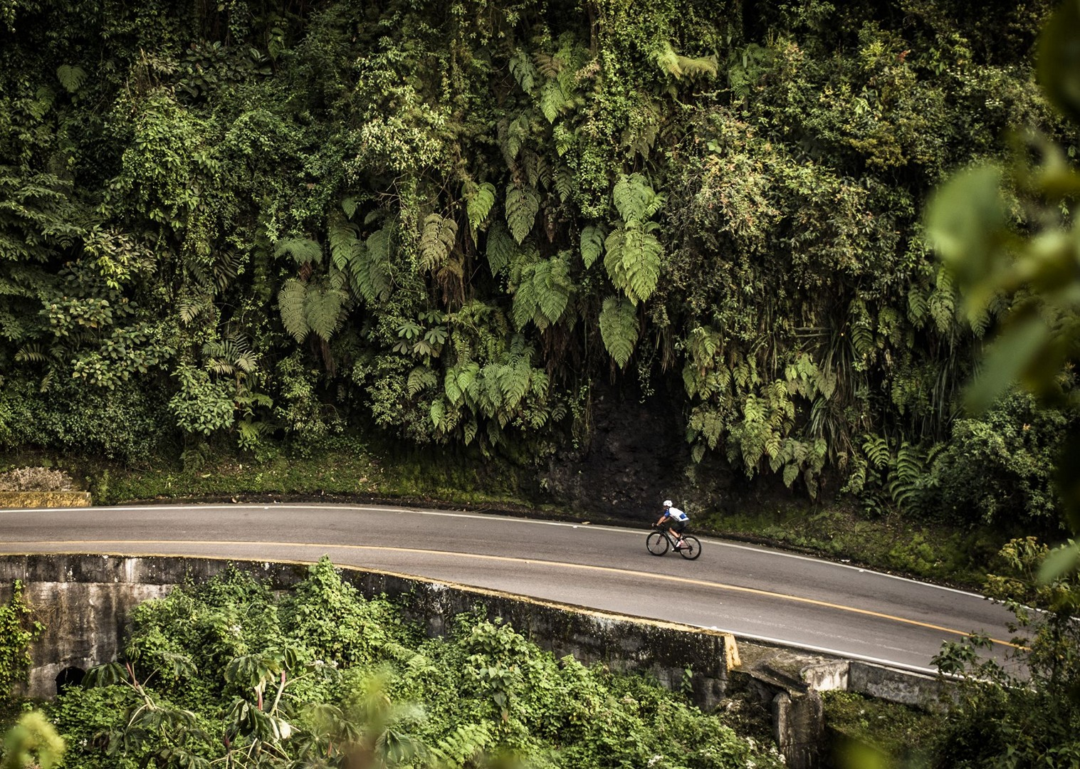 day_4_053.jpg - Colombia - Emerald Mountains - Road Cycling