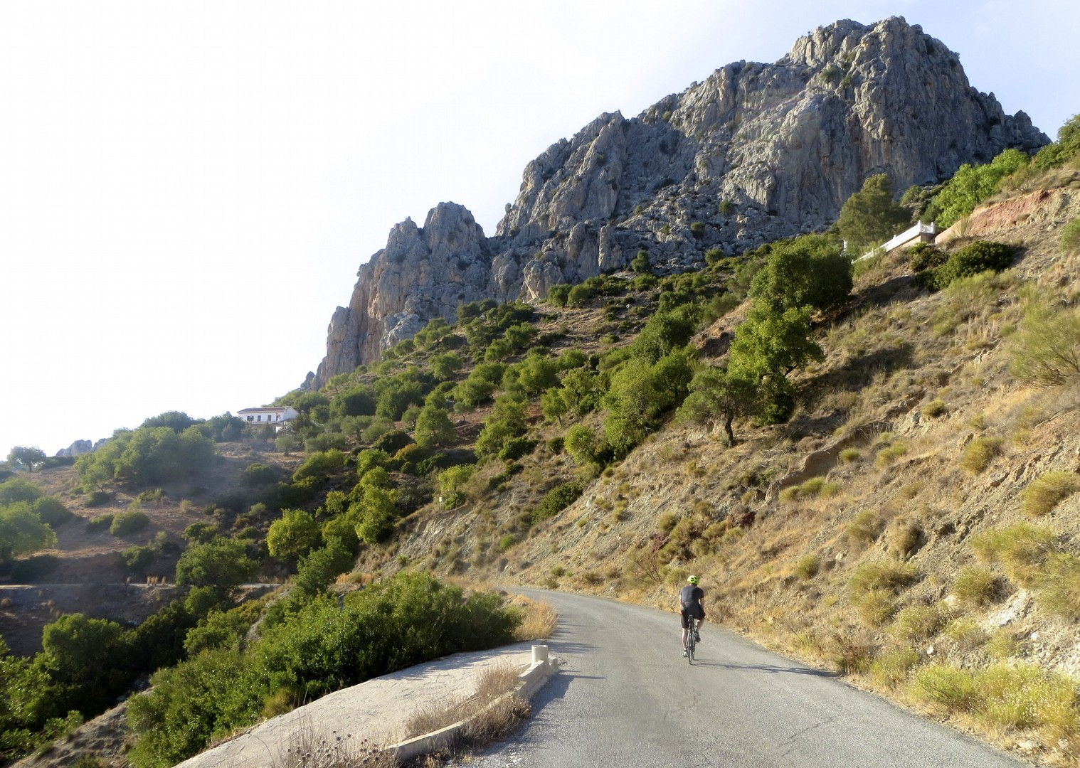 Riojanrolling12.jpg - Northern Spain - La Rioja - Ruta del Vino - Guided Road Cycling Holiday - Road Cycling