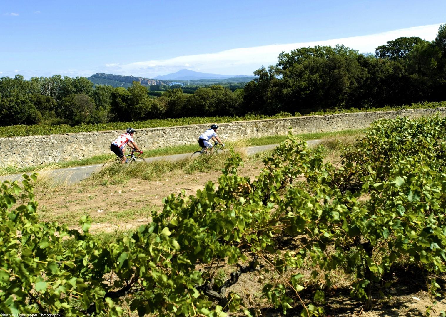guided-road-biking-alsace-burgandy-beaujolais-france.jpg - NEW! France - Alsace, Burgundy and Beaujolais - Road Cycling