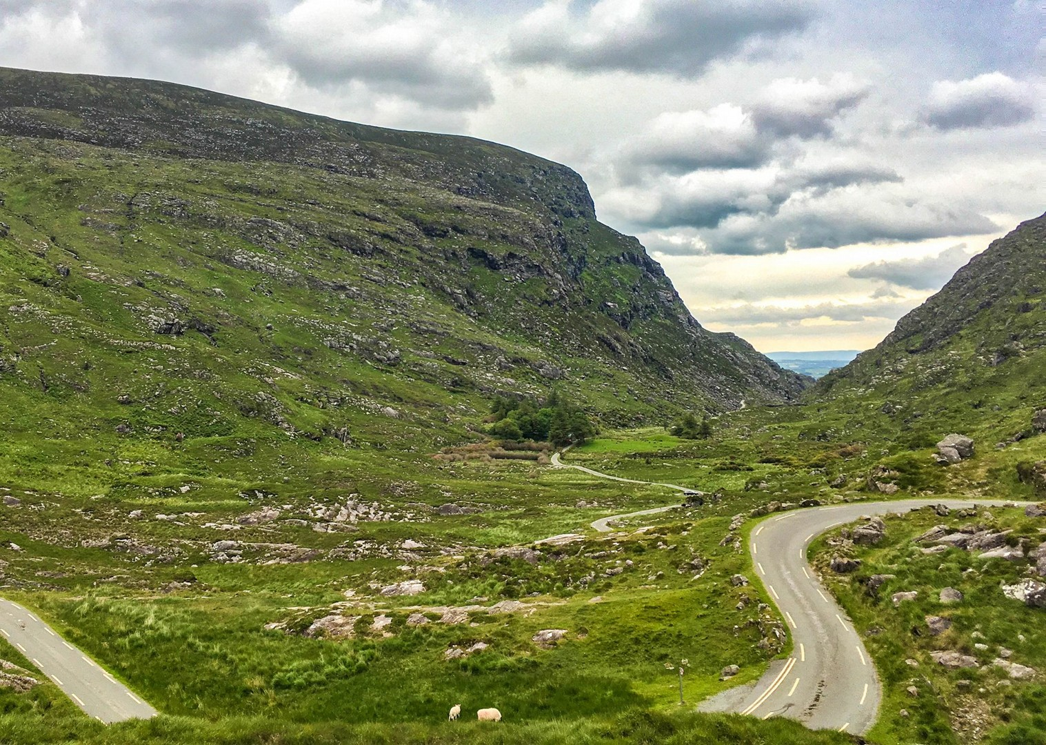 cycling-irish-mountains-leisure-trip-self-guided-ireland.jpg - Ireland - Highlights of Kerry - Self-Guided Leisure Cycling Holiday - Leisure Cycling