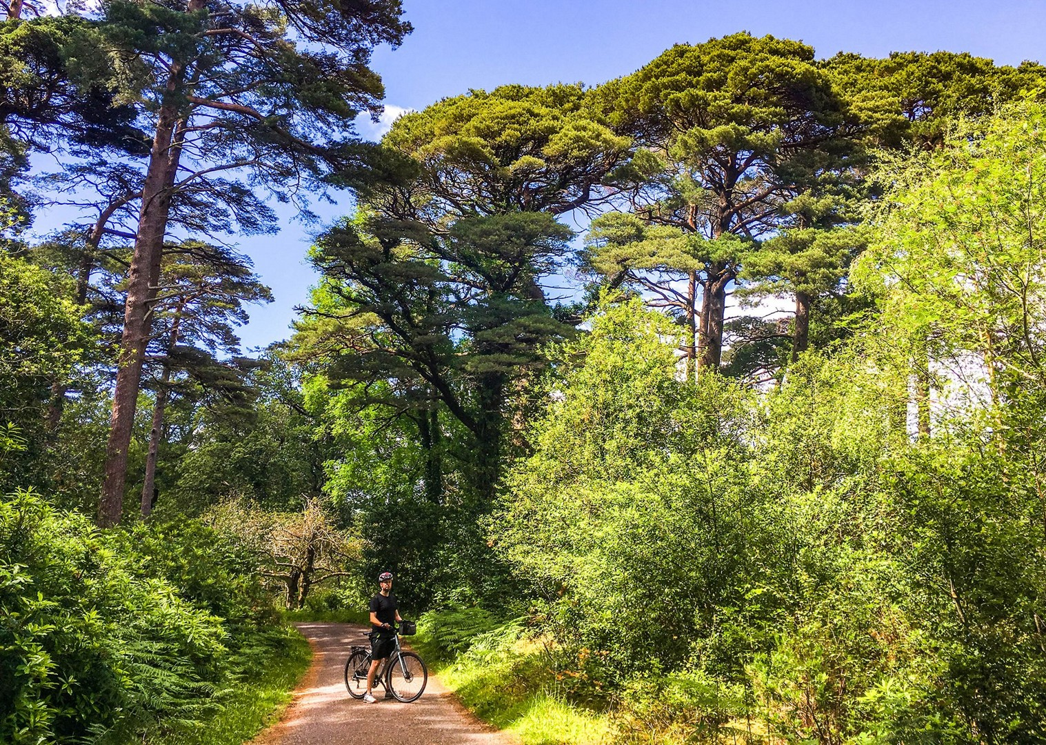 cycling-ireland-kerry-holiday-self-guided-leisure-trip.jpg - Ireland - Highlights of Kerry - Self-Guided Leisure Cycling Holiday - Leisure Cycling