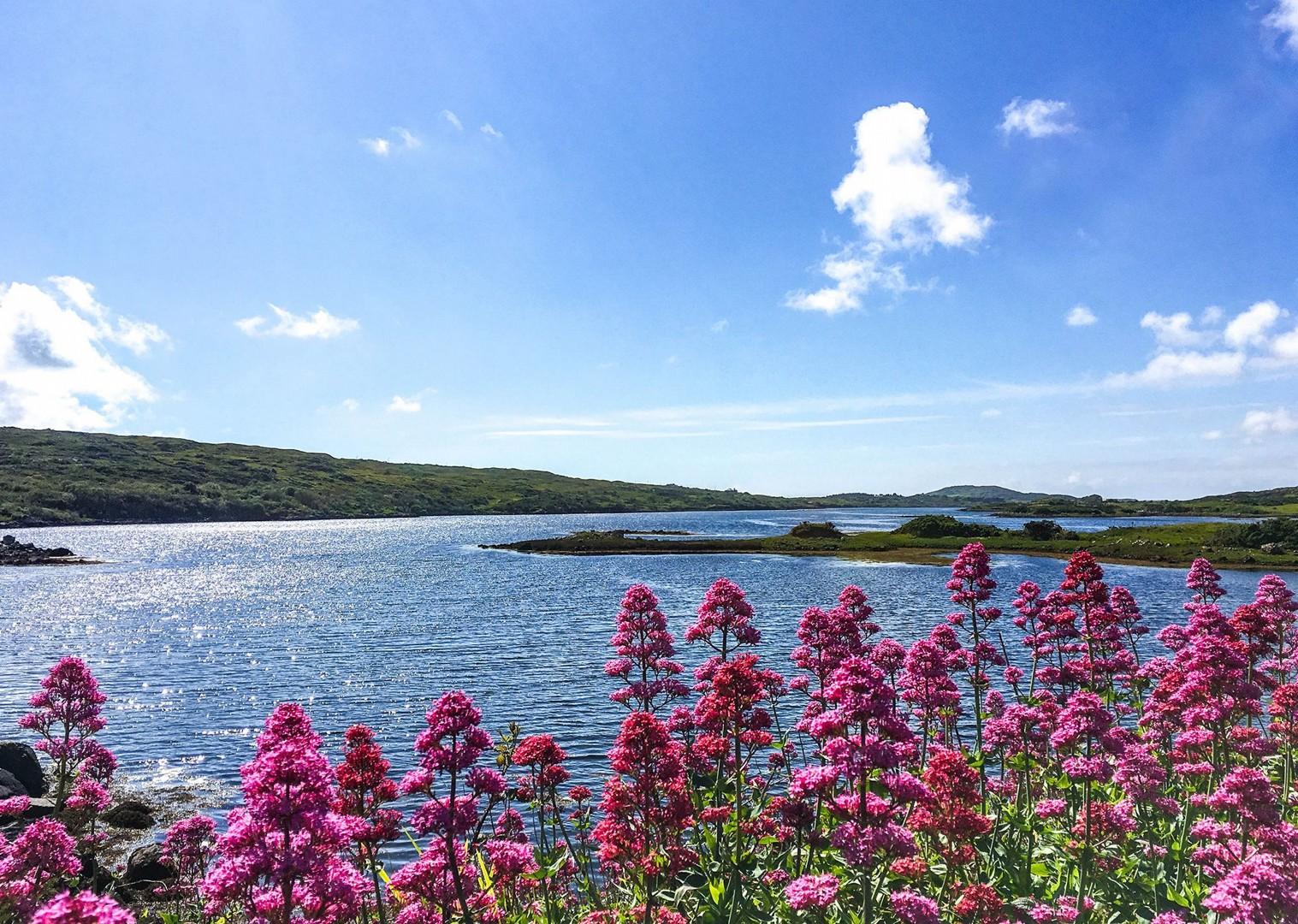 ireland-connemara-and-aran-isles-leisure-cycling-holiday-trip-self-guided.jpg - NEW! Ireland - Connemara and the Aran Isles - Leisure Cycling